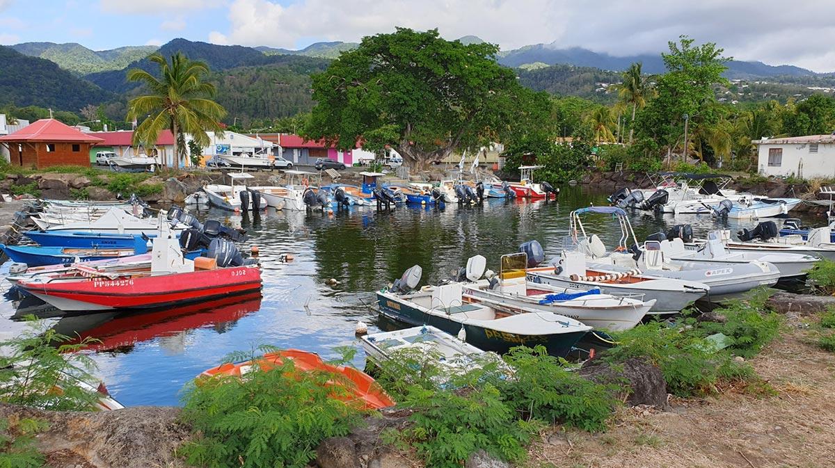 Martinik, autor: Martin Orság